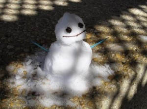 snowman in san antonio texas