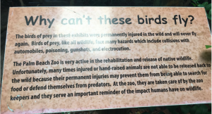hurt birds sign