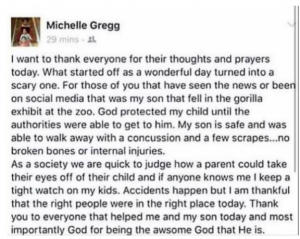 michelle gregg statement